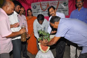 training on organic vegetables